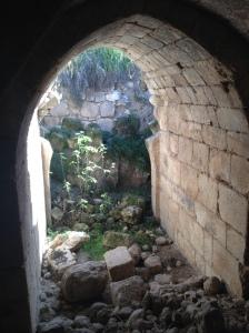 Tel Hannaton 010