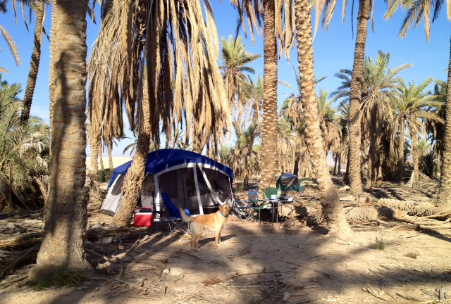 We managed to find an isolated spot among the palm trees